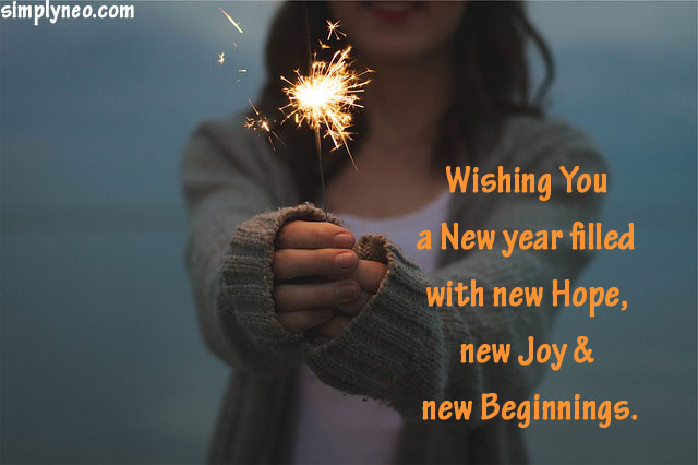 Wishing you a New year filled with new Hope, new Joy & new Beginnings. Happy New Year